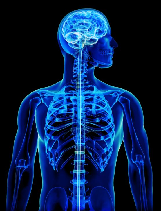 X-Ray, MRI, or CT Scan?
